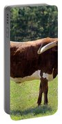 Red And White Texas Longhorn Bull Portable Battery Charger