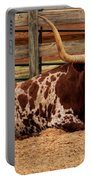 Red And White Texas Longhorn Portable Battery Charger