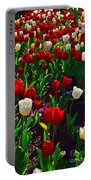 Red And White Tulip Art Portable Battery Charger