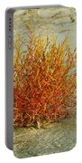 Red And Yellow Desert Color Portable Battery Charger