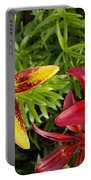 Red And Yellow Lilly Flowers In The Garden Portable Battery Charger