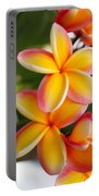 Plumeria Smoothie Portable Battery Charger
