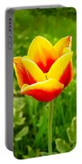 Red And Yellow Tulip Portable Battery Charger