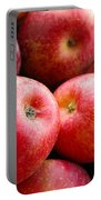 Red Apples Portable Battery Charger