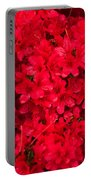 Red Azalias Portable Battery Charger