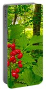 Red Baneberry Along Rivier Du Nord Trail In The Laurentians-qc Portable Battery Charger