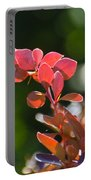 Red Barberry Portable Battery Charger