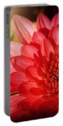 Red Beauty Welcomes The Sun - Flowers Of Summer Portable Battery Charger