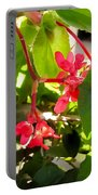 Red Begonia Peaking Through The Leaves Portable Battery Charger