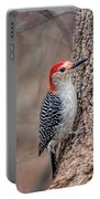 Red Bellied Woodpecker Portable Battery Charger