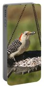 Red Bellied Woodpecker - Melanerpes Carolinus Portable Battery Charger