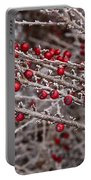 Red Berries Covered In Snow Portable Battery Charger