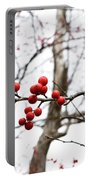 Red Berry Sprig Portable Battery Charger