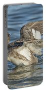 Red-breasted Merganser Portable Battery Charger
