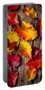 Red Butterfly In Autumn Leaves Portable Battery Charger