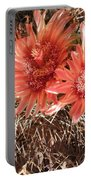 Red Cactus Portable Battery Charger
