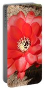 Red Cactus Flower Square Portable Battery Charger