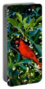 Red Cardinal 1 Portable Battery Charger