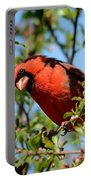 Red Cardinal In Springtime Portable Battery Charger