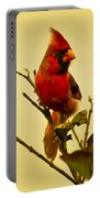 Red Cardinal No. 2 - Kauai - Hawaii Portable Battery Charger