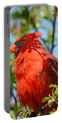 Red Cardinal Pink Blooms Portable Battery Charger