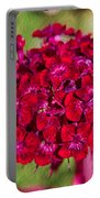 Red Carnations Portable Battery Charger by Omaste Witkowski