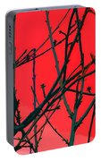 Red Portable Battery Charger