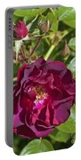 Red Climbing Rose Portable Battery Charger