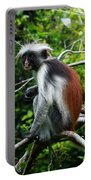 Red Colobus Monkey Portable Battery Charger
