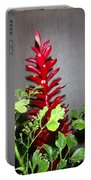 Red Cone Ginger - No 1 Portable Battery Charger