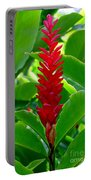 Red Cone Ginger Portable Battery Charger