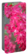 Red-flowering Currant Blossom Portable Battery Charger