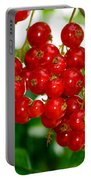 Red Currants Ribes Rubrum Portable Battery Charger