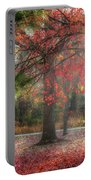 Red Dawn Portable Battery Charger