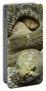 Red Diamond Rattlesnake 3 Portable Battery Charger