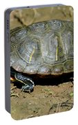 Red Ear Slider Portable Battery Charger