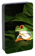 Red Eyed Green Tree Frog Portable Battery Charger