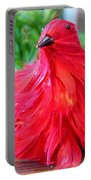 Red Feathers Portable Battery Charger