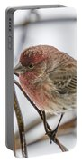 Red Finch Portable Battery Charger