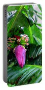 Red Flower Of A Banana Against Green Leaves Portable Battery Charger