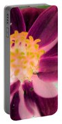 Red Flower - Photopower 256 Portable Battery Charger