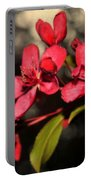 Red Flowering Crabapple Blossoms Portable Battery Charger