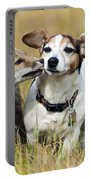 Red Fox Cub With Jack Russell Portable Battery Charger