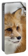 Red Fox In Snow Portable Battery Charger
