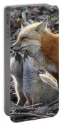 Red Fox Kits And Parent Portable Battery Charger