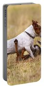 Red Fox Playing With Jack Russell Portable Battery Charger