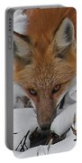Red Fox Upclose Portable Battery Charger