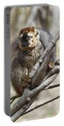 Red-fronted Lemur  Eulemur Rufifrons Portable Battery Charger