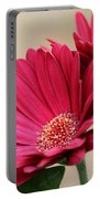 Red Gerber Daisies Portable Battery Charger