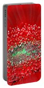 Red Gerbera Flower  Portable Battery Charger